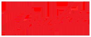 Logo_Danfoss copie